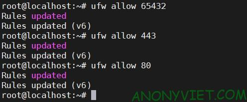 Open port with ufw